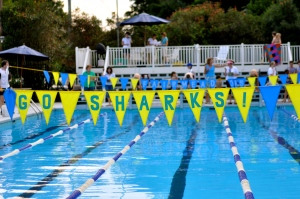 Fairmeadows Sharks